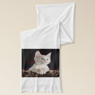 KITTEN: ENTRANCING MOMENT ~ SCARF