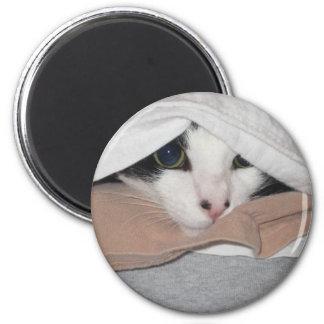 Kitten Eyes 2 Inch Round Magnet