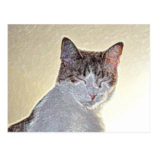 Kitten eyes closed sparkle postcard