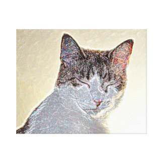 Kitten eyes closed sparkle stretched canvas prints