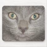 kitten face2 mousepad -gray