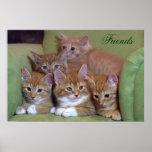 Kitten Friends Poster