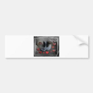 Kitten gifts bumper sticker