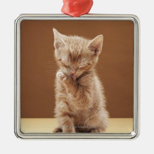 Kitten grooming metal ornament