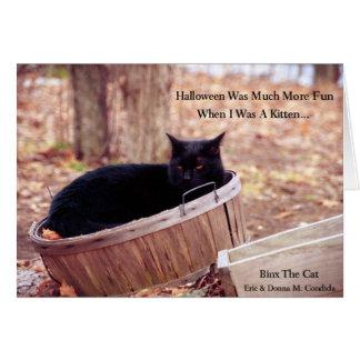 Kitten Halloween... Card