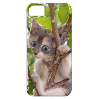 Kitten hanging there iPhone 5 case