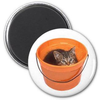 Kitten hiding in a pail 2 inch round magnet