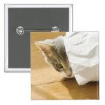 Kitten hiding in paper bag pinback button