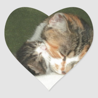 Kitten Hug Heart Sticker