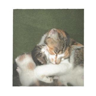 Kitten Hug Notepad