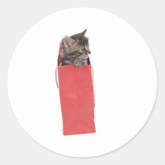 kitten in a bag red classic round sticker