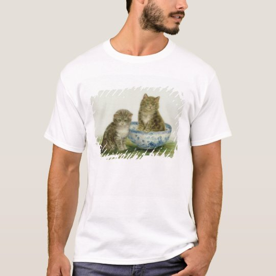 Kitten in a Blue China Bowl T-Shirt