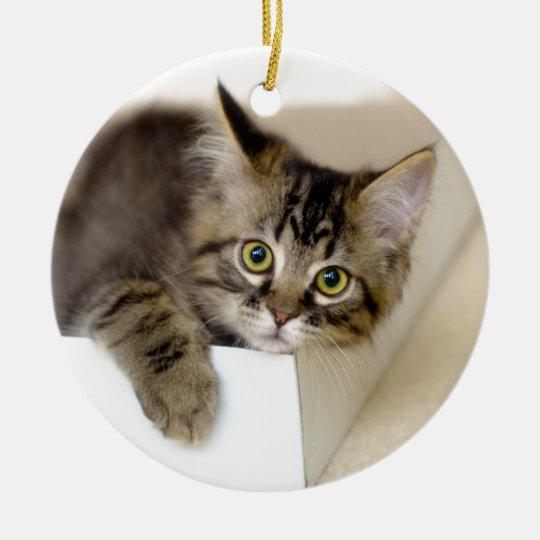 Kitten in a Box ornament