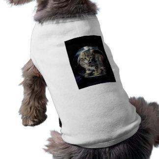 Kitten in a Jar Dog Tshirt