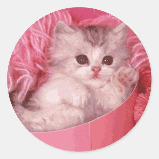 Kitten in A Pink Box Stickers