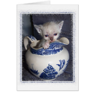 Kitten in a Pitcher Thank-you Card