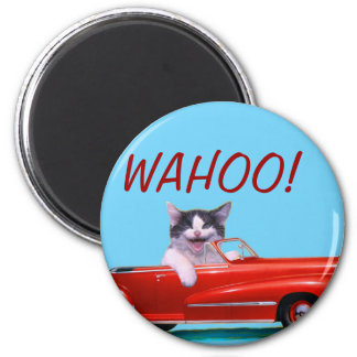Kitten in a Red Convertible 2 Inch Round Magnet