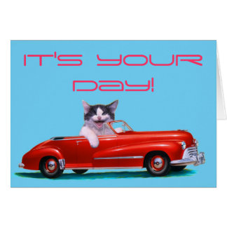 Kitten in a Red Convertible Greeting Cards
