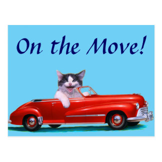 Kitten in a Red Convertible Post Card