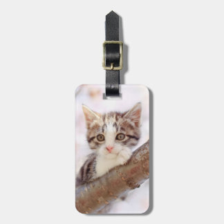 Kitten In A Tree Luggage Tag
