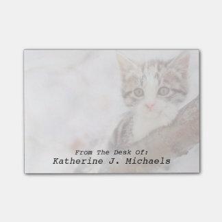 Kitten In A Tree Post-it® Notes
