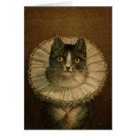 Kitten in an Elizabethan ruff Card