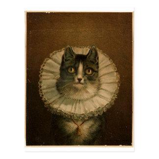 Kitten in an Elizabethan ruff Postcard