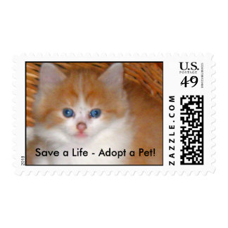 Kitten in Basket on Right, Save a Life - Adopt ... Postage Stamps