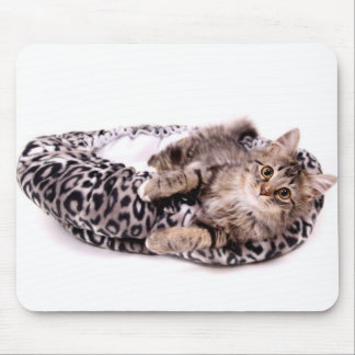 Kitten In Bed Mouse Pad
