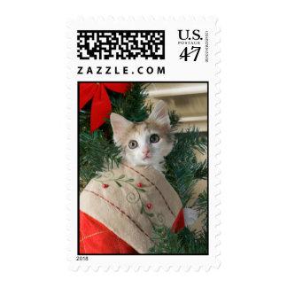 Kitten in Christmas Stocking Postage
