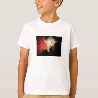 Kitten in Christmas Stocking T-Shirt
