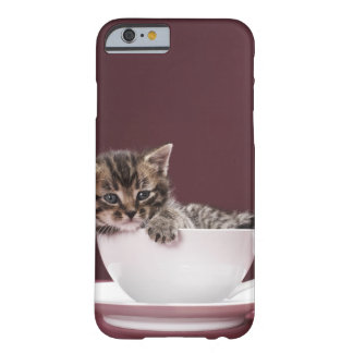Kitten in cup and saucer barely there iPhone 6 case