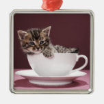 Kitten in cup and saucer christmas ornament