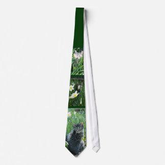 Kitten In Daffodils Tie