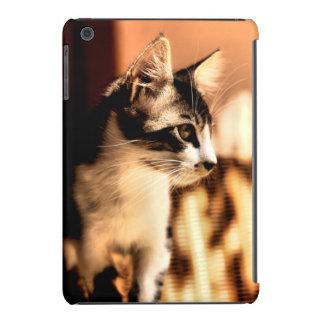 Kitten in dappled sunlight iPad mini cases