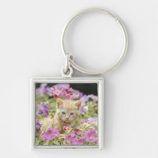 Kitten in flowers keychain
