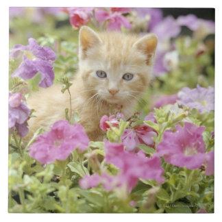 Kitten in flowers large square tile
