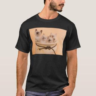 kitten in has flower pot T-Shirt