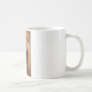 kitten in has stroller coffee mug