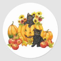 kitten in pumpkin sticker