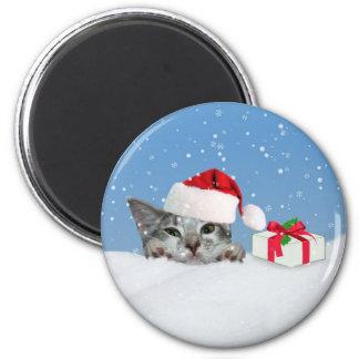 Kitten in Santa Hat Magnet