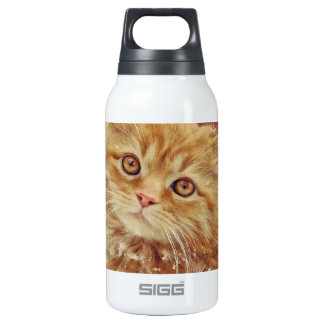 Kitten in Snow 10 Oz Insulated SIGG Thermos Water Bottle
