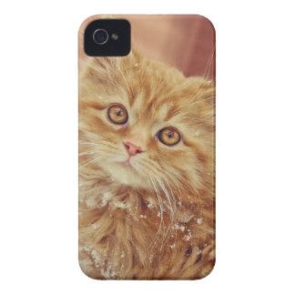 Kitten in Snow Case-Mate iPhone 4 Case