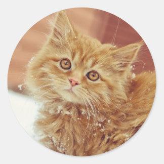 Kitten in Snow Classic Round Sticker
