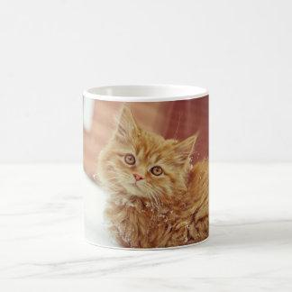 Kitten in Snow Classic White Coffee Mug