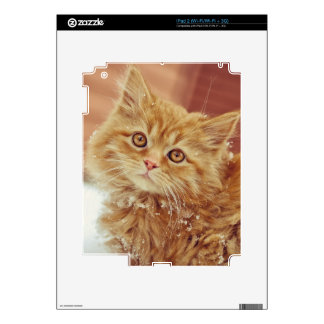 Kitten in Snow Decals For The iPad 2