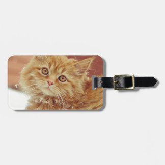 Kitten in Snow Luggage Tag