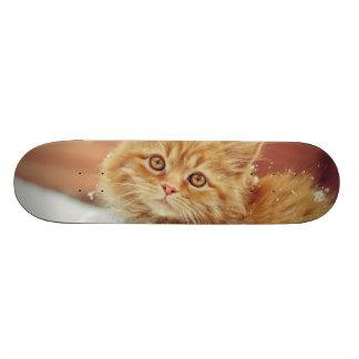 Kitten In Snow Skateboard Deck