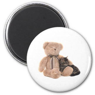kitten in the arms off has teddy bear magnet