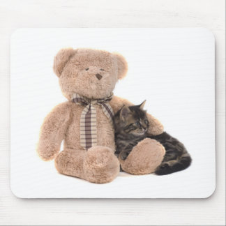 kitten in the arms off has teddy bear mouse pad
